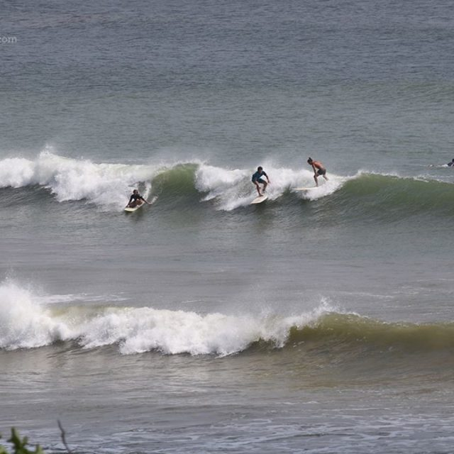 Your typical day of surfing in weligam  srilanka hellip
