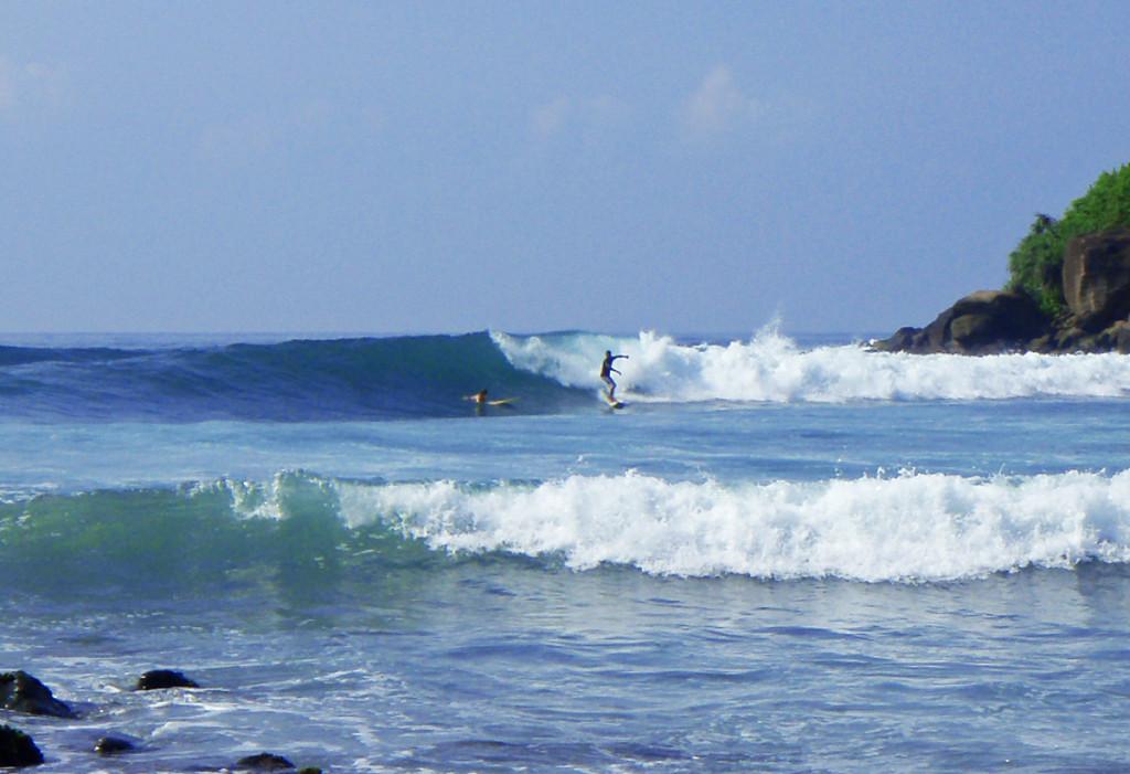 mirissa surfing sri lanka ©thefreesurfer.com