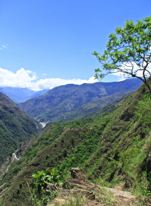 "Some of the ""Inca Trail"" on the way to Machu Picchu"