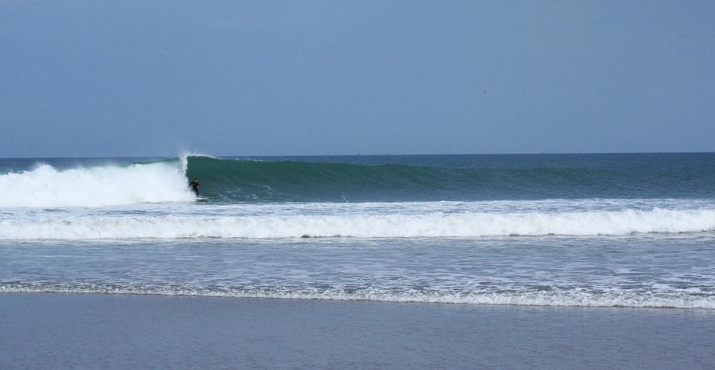 lobitos surfing peru ©thefreesurfer.com