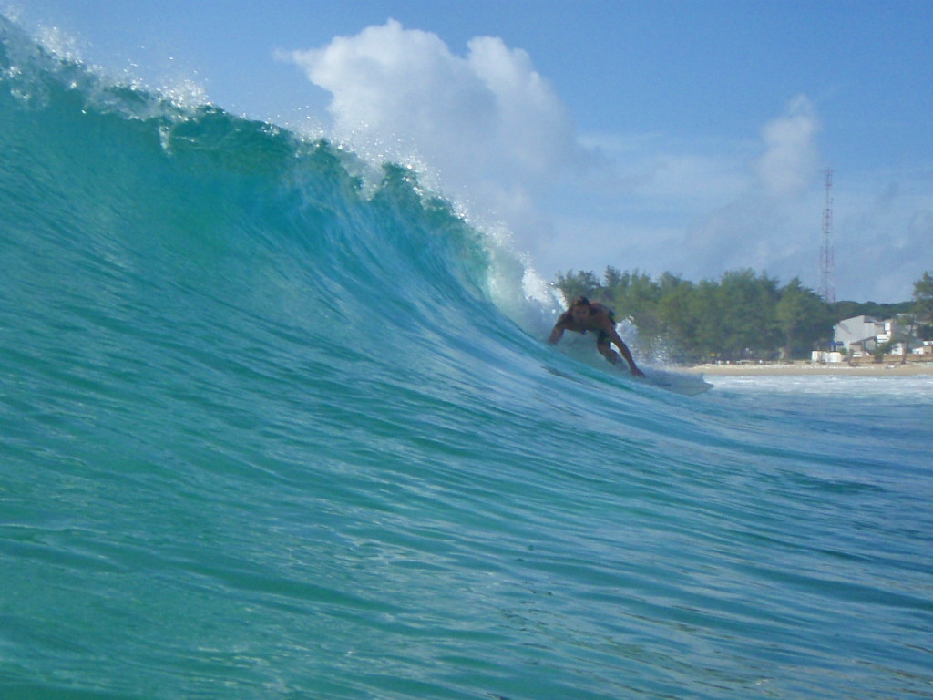 surfing mozambique ©thefreesurfer.com