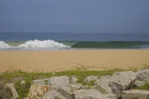 thefreesurfer.com india beachbreak