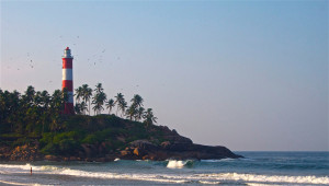 kovalam surfing india ©thefreesurfer.com