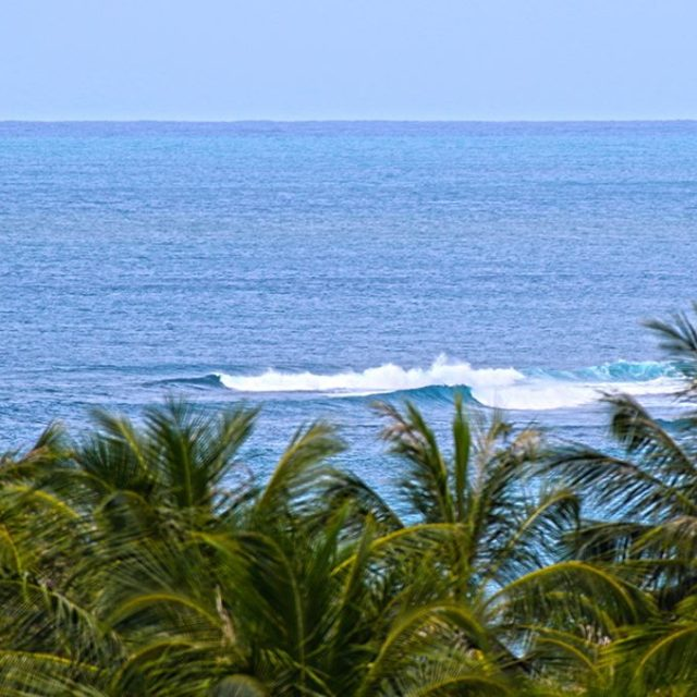 Are there still uncrowned waves in the mentawais ? Simplehellip