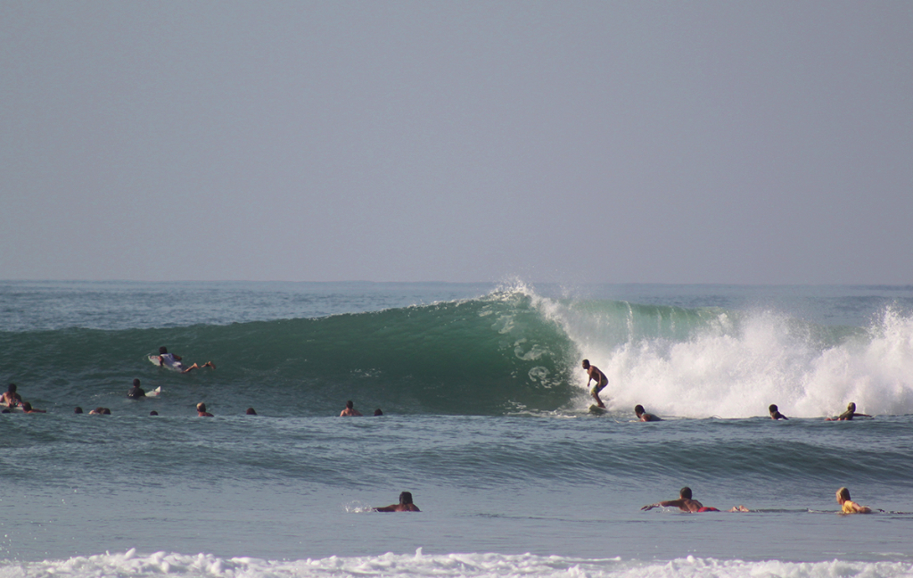 And as soon as the next big swell was back, the crowds came with it. thefreesurfer.com