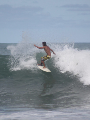 Fun size, open faces and peeling for ever.  thefreesurfer.com