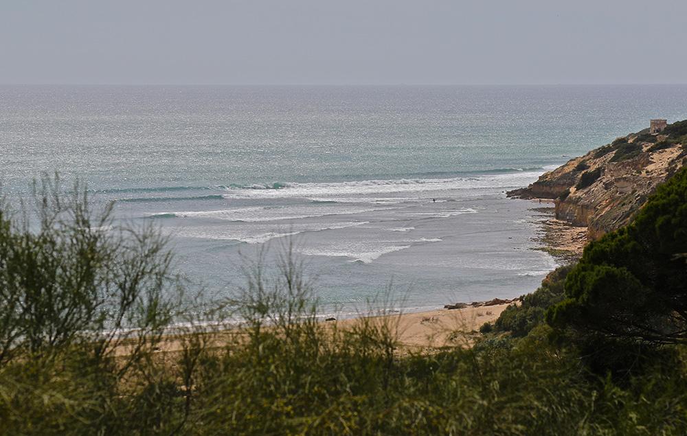 surf andalucia El Palmar@thefreesurfer.com