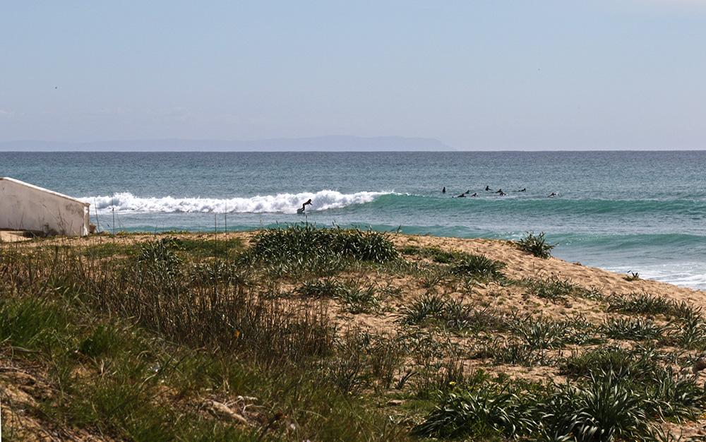 surf andalucia CAÑOS DE LA MECA @thefreesurfer.com