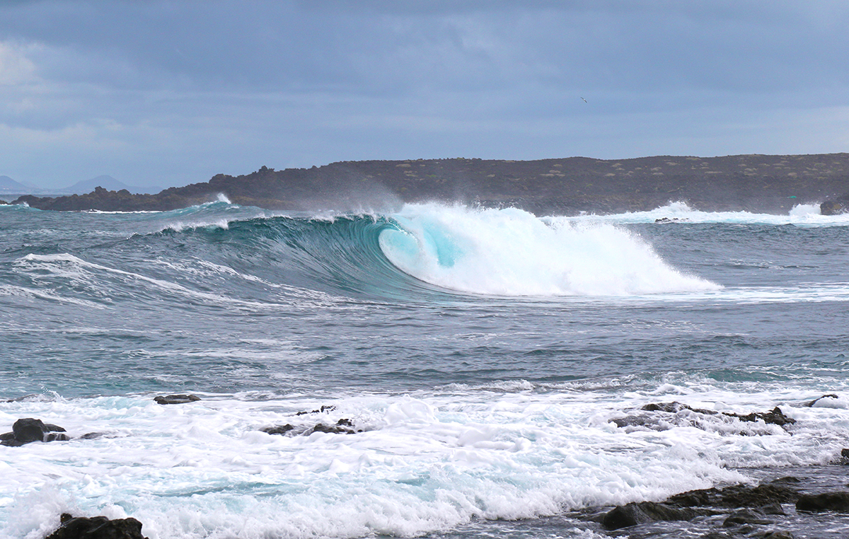 Surfing Fuerteventura North Shore ©thefreesurfer.com