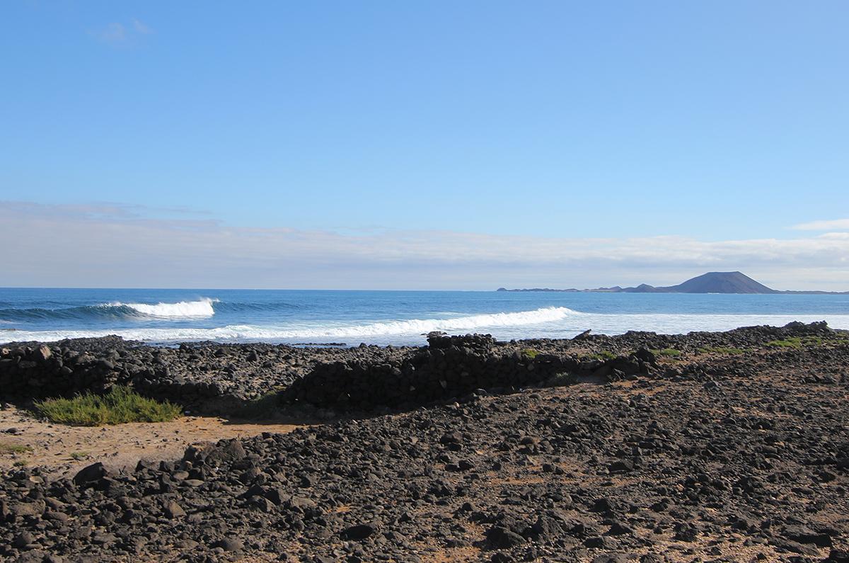 surfing Fuerteventura wave ©thefreesurfer.com