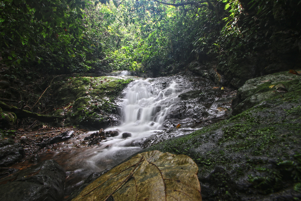 Bukit Lawang jungle trek thefreesurfer.com waterfall