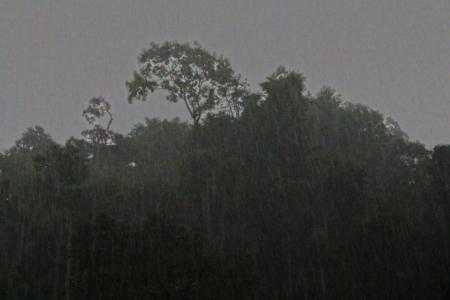 Bukit Lawang jungle trek thefreesurfer.com rain