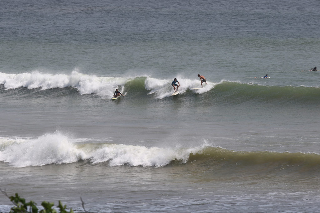 Surfing Sri Lanka Weligama ©thefreesurfer.com