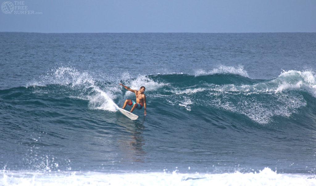 surf fit ©thefreesurfer.com