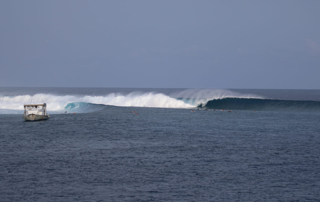 Chicken. Perfect left wave to surf in the Maldives