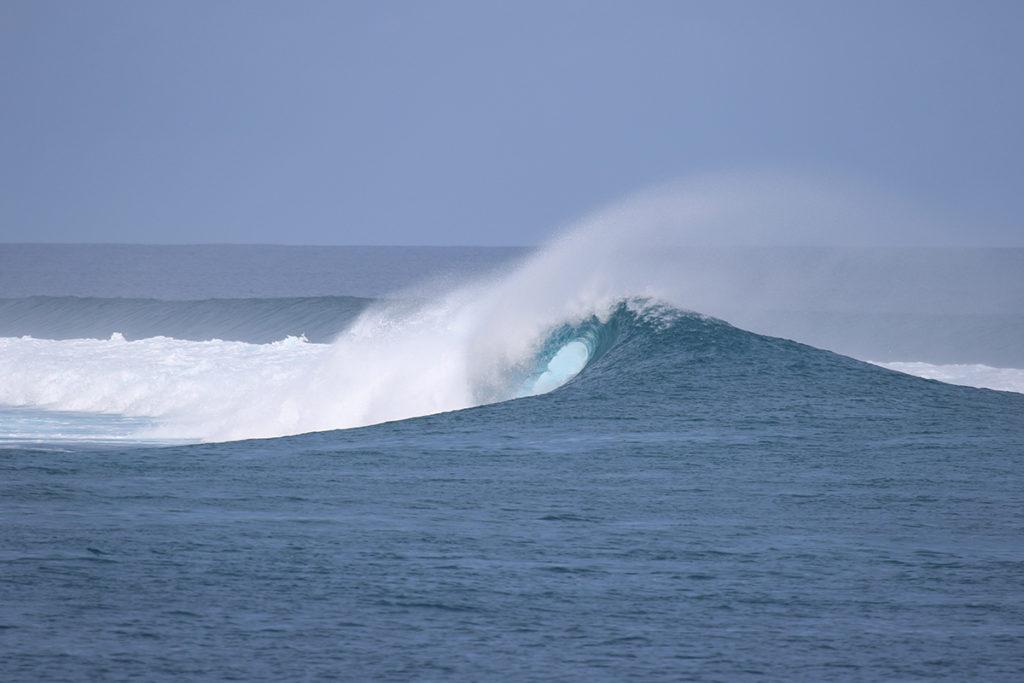 chicken surf maldives ©thefreesurfer.com