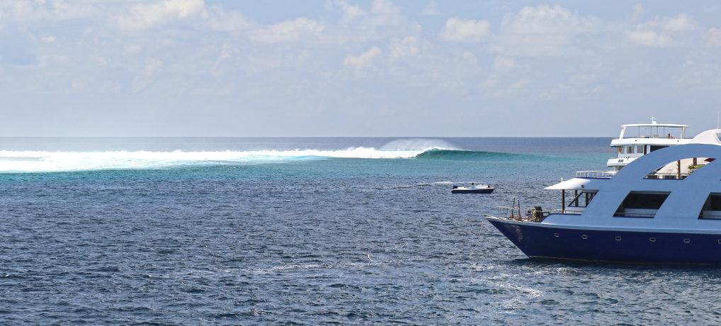 Surf Maldives