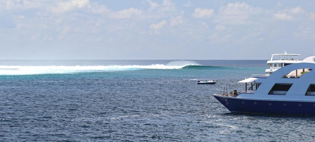 surf maldives boat trip ©thefreesurfer.com